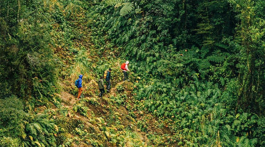 The North Face Announces Environmental Commitments