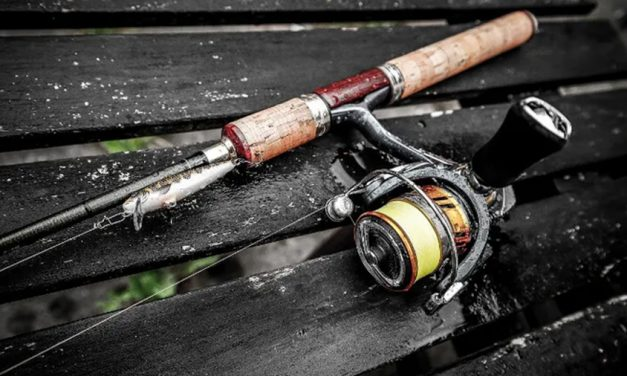 RBFF Report: Fishing Participation Booming