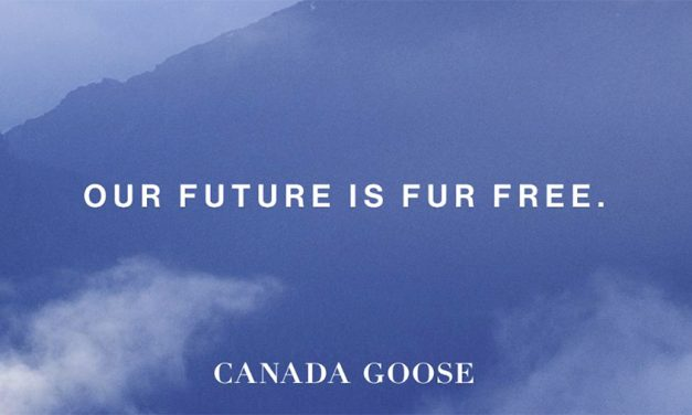 Inside The Call: Canada Goose Not Concerned About Going Fur Free