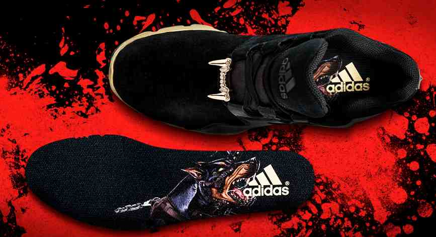 ee55bac6c0f Adidas and Snoop Dogg Launch New Football Cleat